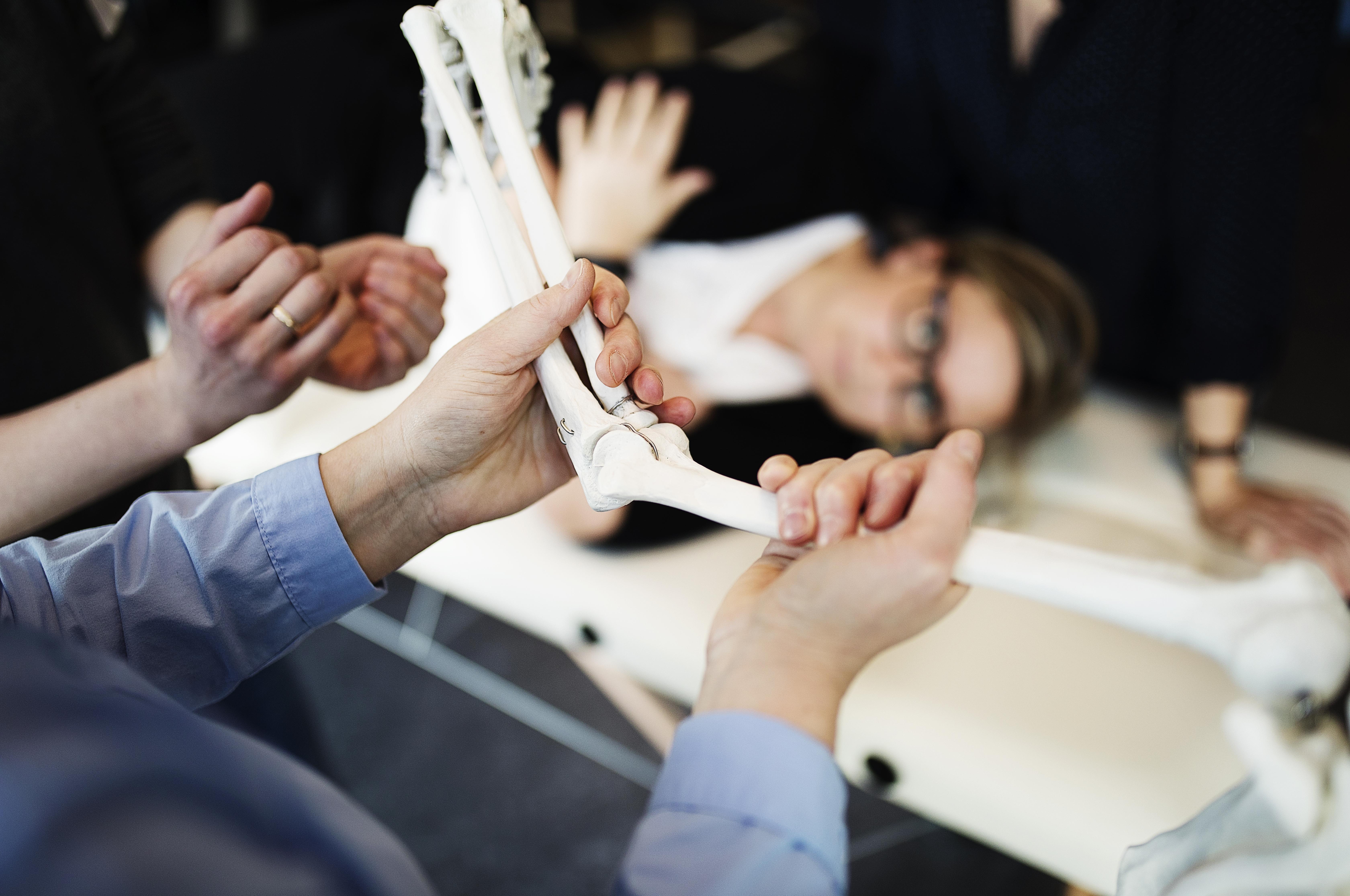 På albuekurset lærer håndterapeuterne nye undersøgelses- og behandlingsteknikker.